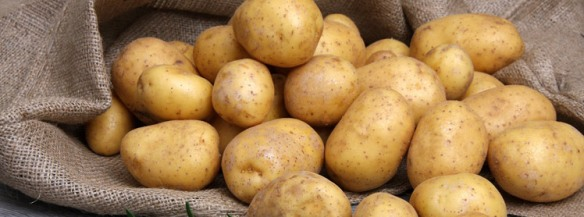 aardappels-zak-748.jpg