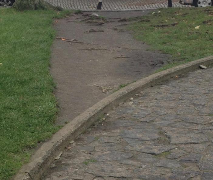 Olifantenpad