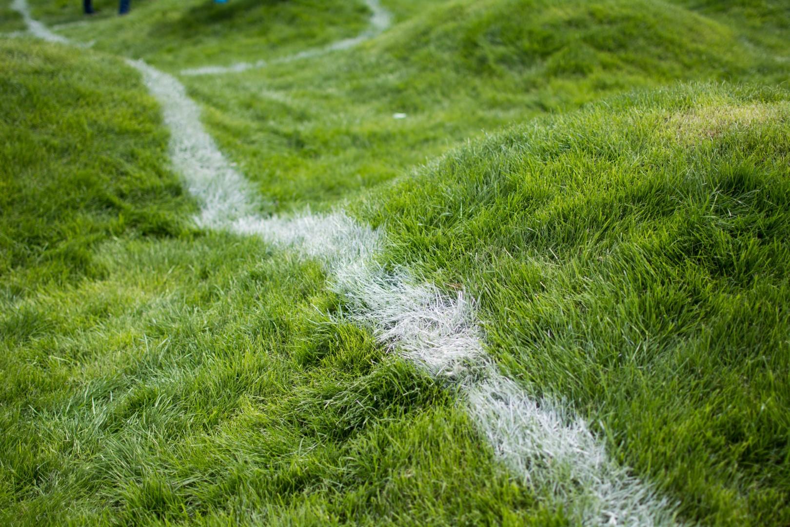 Untitled(soccer-pitch)2.jpg