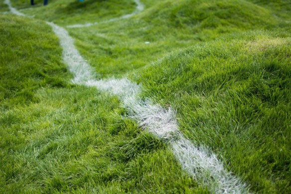 Untitled(soccer-pitch)2.jpg